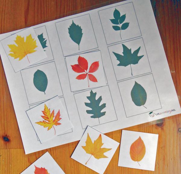 """Игра """"Найди тень. Осенние листья"""""""